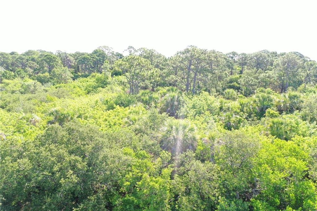 treetop views - Vacant Land for sale at 9427 Downing St, Englewood, FL 34224 - MLS Number is D6112667