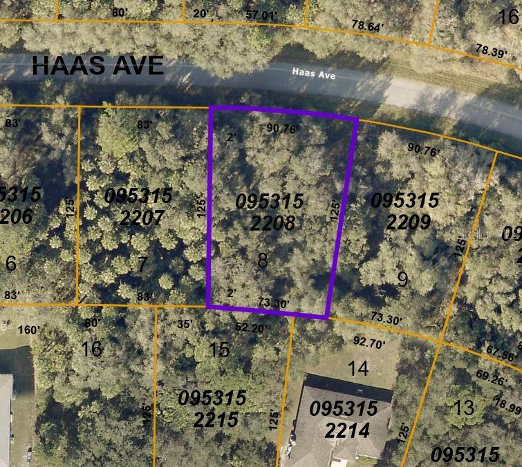 Lot 8 Haas Ave