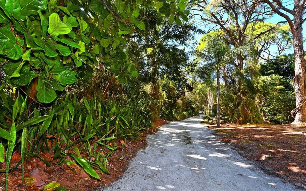 Mature plantings on the property - Vacant Land for sale at 8535 Midnight Pass Rd, Sarasota, FL 34242 - MLS Number is A4146348