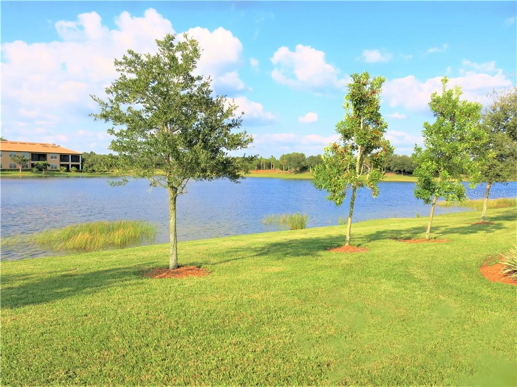 View from lanai - Single Family Home for sale at 10424 Crooked Creek Dr, Venice, FL 34293 - MLS Number is N6112285
