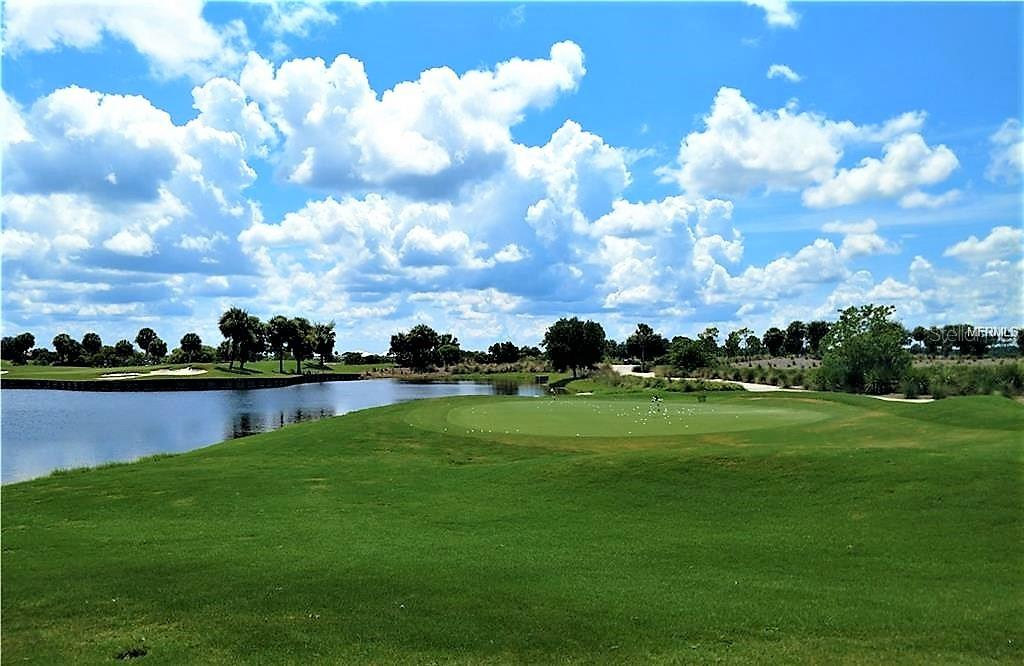 golf course practice area - Single Family Home for sale at 23793 Waverly Cir, Venice, FL 34293 - MLS Number is N6112352